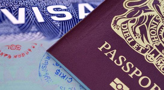 Visa Subclass 300